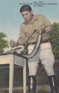 Florida Silver Springs Ross Allen Milking Rattlesnake Curteich sk626