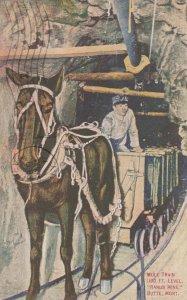 Mule Train , 100 Ft Level , RARUS MINE , Butte , Montana , 1911