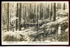 dc3126 - AUSTRALIA Nyora 1910s Healesville. Grand Valley Circle. Rose Series. Re