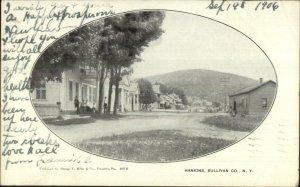 Hankins NY Sullivan County Street View c1905 Postcard