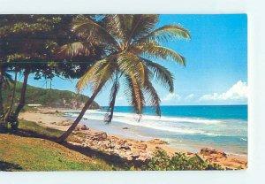 Pre-1980 BEACH SCENE Isabela - Near Mayaguez Puerto Rico PR AE9129