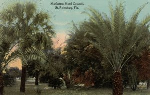 ST. PETERSBURG, Florida, 1900-10s; Manhatten Hotel Grounds, Palm Trees