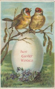 Best EASTER Wishes, 1900-10s; Two birds perched on branch above egg