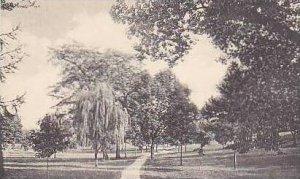Ohio Delaware Walk to Spring From Union Street Ohio Wesleyan University Alber...