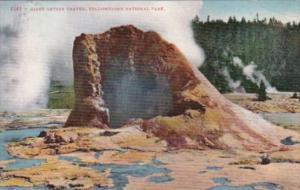 Giant Geyser Crater Yellowstone National Park Curteich