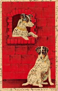 FOX TERRIERS IN WINDOW LOOKING AT FRIEND -1912 ARTISTEMBOSSED POSTCARD