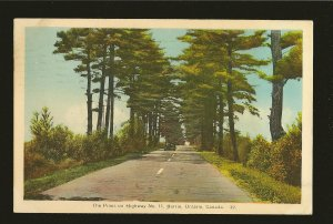 Postmarked 1947 Toronto Ont Pines on Hwy No 11 Barrie Ontario Color Postcard