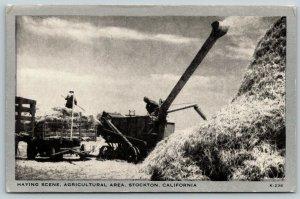 Stockton California~Haying Farm~Farmer in Wagon~Machine~1940s Silver Border PC