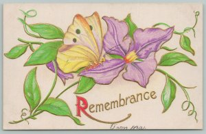 Flowers Greetings~Butterfly Resting on Purple Bluebell~c1910 Postcard