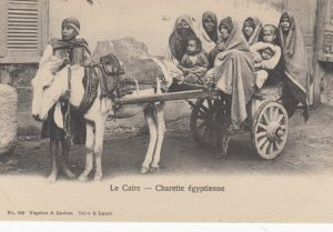 Le Caire , EGYPT , 00-10s ; Donkey Cart