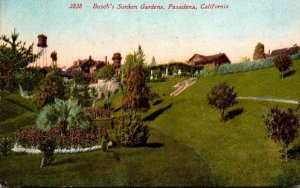 California Pasadena Busch's Sunken Gardens 1912