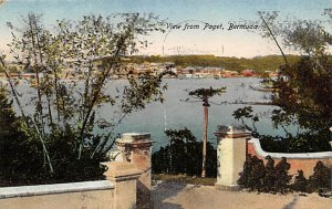 Bermuda Post card Old Vintage Antique Postcard View From Paget 1924