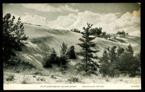 Picturesque Duneland.  Duneland Study. C. R. Childs