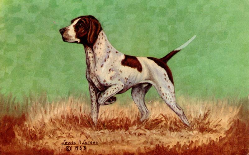 Dog - The Pointer. Artist: Lewis Larsen