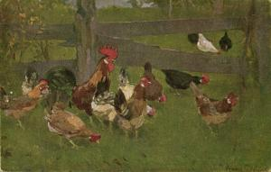 Chicken Hen Rooster (1910s) IX