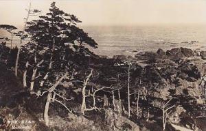 RP, Partial Scene, Murotosaki, Japan, 1920-1940s