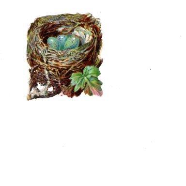 Vintage Victorian Scrapbook Paper Decal, Bird's Nest with Blue Eggs