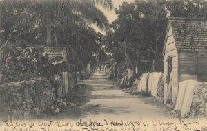 Grant Town , NASSAU, Bahamas, 1907