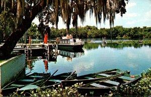 Florida Blue Springs State Park Scene On The Beautiful St John's River 1972