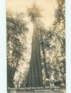 Pre-1950 rppc NICE VIEW Weott - Near Rio Dell California CA W0571