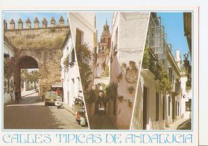 Postal 045776 : Calles tipicas de Andalucia. Cordoba. Calles tipicas