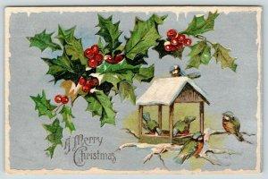 Christmas~Blue Green Birds at Bird Feeder~Holly Berry Branch~Silver Back Emboss