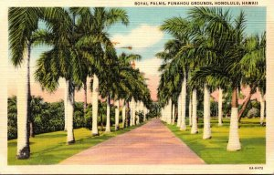 Hawaii Honolulu Punahou Grounds Royal Palms Curteich