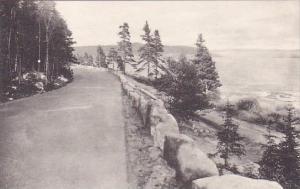 Maine Ocean Drive Bar Harbor Great Head In Distance Albertype