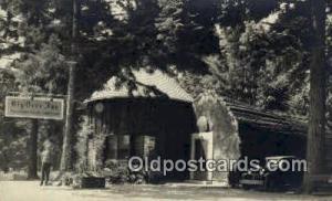 Big Tree Inn Real Photo Postcard Postcards  Big Tree Inn