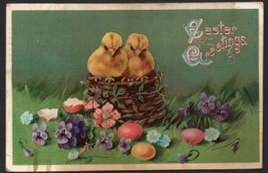 Easter Greetings Chicks in a Basket surrounded Eggs and Flowers - pm1912 - DB