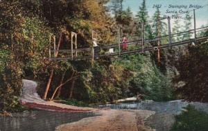 California Santa Cruz Swinging Bridge Big Trees Park