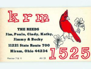 cardinal BIRD - QSL HAM RADIO CARD Hiram Ohio OH t1494