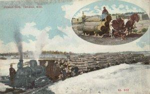 COPEMISH , Michigan , 1900-10s ; Logging