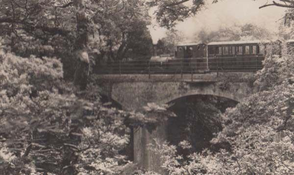 Bridge at Talyllyn Vintage Welsh Wales Train Railway Station Postcard