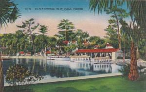 Florida Silver Springs Boat Docks and Glass Bottom Boats