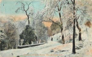 Hot Springs Arkansas~Unusual Winter Scene~Path on Path~Ice Trees~1910 Postcard