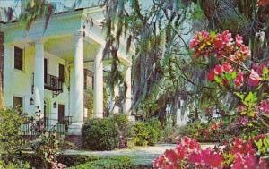 South Carolina Charleston Boone Hall Plantation 1970