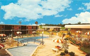 Macon Georgia~Davis Bros Cafeterias & Motor Lodges~Poolside~1970s Postcard