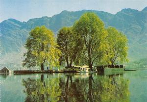 India Char Chinar A tiny Island in the Dal