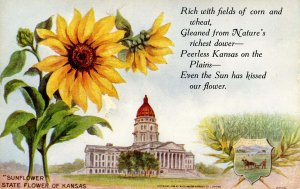 KS - State Flower & Capitol. Sunflower & Topeka