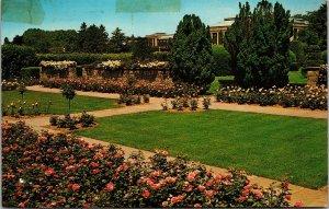 Postcard PA Pennsylvania Rose Garden Longwood Gardens Kennett Square Posted 1970
