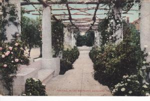 Pergola, Hotel Maryland, Pasadena, California, 1900-1910s