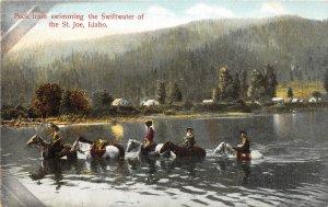 H83/ ST Joe Idaho Postcard c1910 Pack Train Swimming River  61