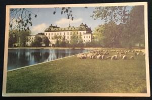 Postcard Unused Drottningholm Palace Sweden LB