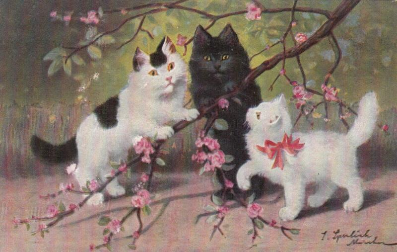 AS: Three Kittens on a Cherry Blossom branch, 1900-10s
