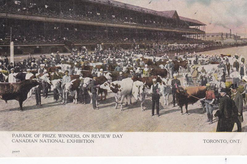 TORONTO, Ontario, Canada, 1900-1910's; Parade Of Prize Winners, On Review Day