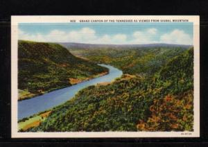 Tennessee colour PC Grand Canyon from Signal Mountain, unused