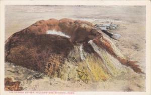The Sponge Geyser Yellowstone National Park