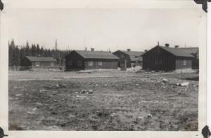 RP: Logging Camp #8 , Minn. , 1900-10s