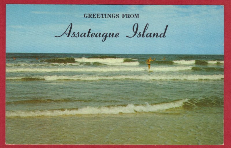 GREETINGS FROM ASSATEAGUE ISLAND, MD  (190)